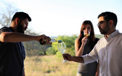 GET YOUR WINES FOR #TXWINE TWITTER TUESDAY